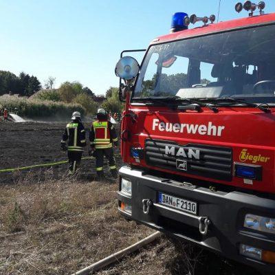 20180930_B1_Flaechenbrand_Guemse_Feuerwehr_Dannenberg_1