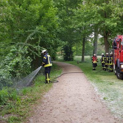 201290526_B1_Feuer_Boeschungsbrand_Feuerwehr_Dannenberg_3