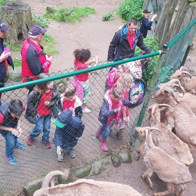 20190615_FG_Besuch_Schweriner_Zoo_Floriangruppe_Dannenberg_5